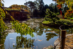2019-11-02 Fall Visit to Brooklyn Botanical Gardens (Touch Edits) - 055