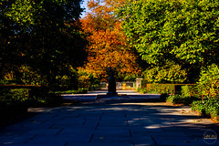 2019-11-02 Fall Visit to Brooklyn Botanical Gardens (Touch Edits) - 002