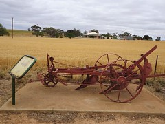 Dowlingville. Whittaker invented a stump jump plough in 1876 about the same time that the Smith brothers did at Arthurton. This plough is outside the old Whittaker homestead with ripening wheat paddocks in front of it.