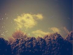 Redscale clouds