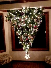 Our new upside down Christmas tree...
