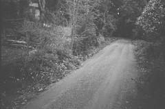 Upalong Road (photo 3)