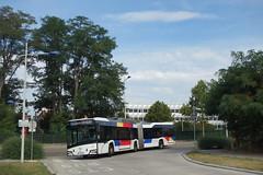 Solaris Urbino 18 IV n°707  -  Strasbourg, CTS