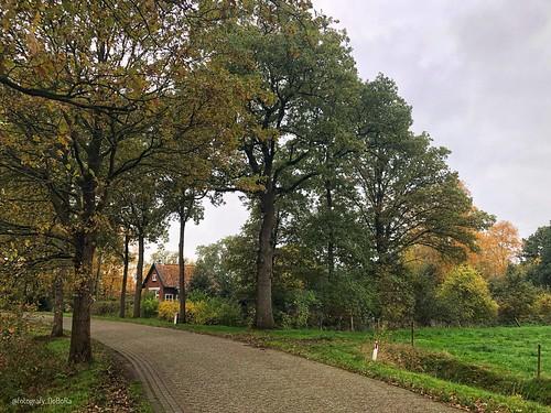 Herfst 2019 Gorredijk