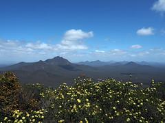 Views Of Western Peaks - Mt Trio, Stirling Ranges, Western Australia