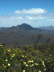Views Towards Toolbrunup - Mt Trio, Stirling Ranges, Western Australia
