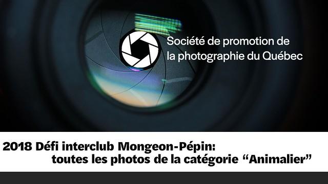 2018 Défi interclubs Mongeon-Pépin - toutes les photos - Animalier