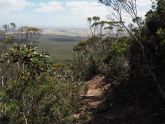 Ascent Views - Mt Trio, Stirling Ranges, Western Australia