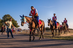 Mounted knights making their way to the competition grounds. Ljubičevske konjičke igre 2019