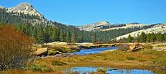 Tuolumne Meadow and River, Yosemite 10-19