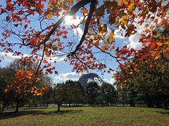 Unisphere In Fall; Queens, New York