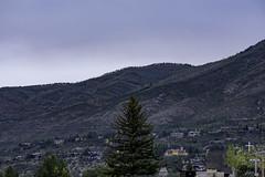 Aspen | 190915-0479-jikatu