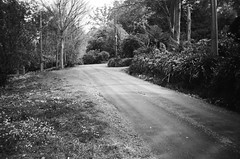 Upalong Road (photo 4)