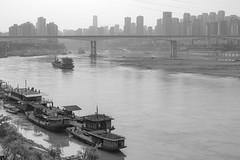 31509-Chongqing