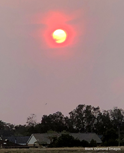 Red sun Thrugh Smoke Haze, Tuncurry, NSW