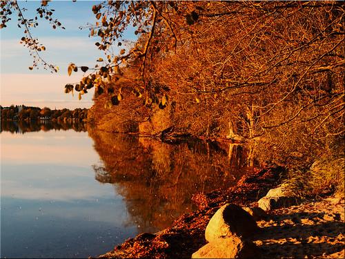 Autumn at the lake Lake Ploener on the Prince island