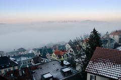 Rare winter morning fog in St.Gallen. Dreamy city view.