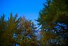 Photo:L1003591 By 反光鏡的視野