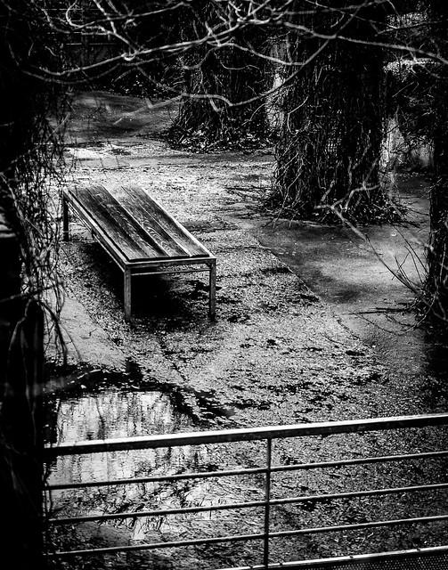 Le banc des disparus
