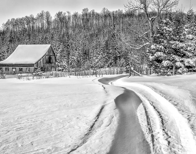 Sentier de neige
