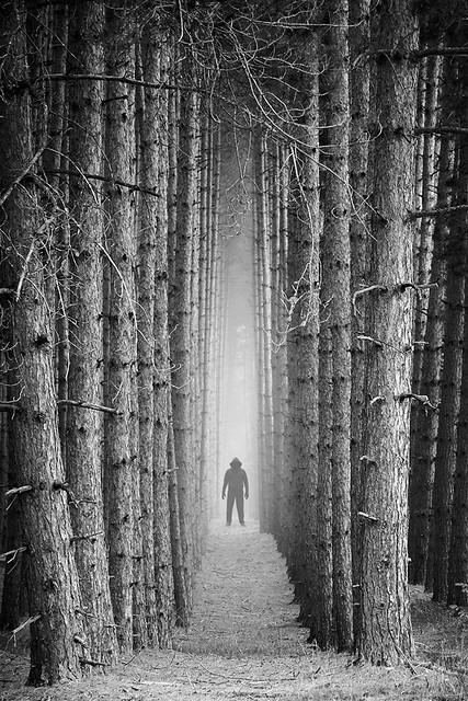 Sombre mystère