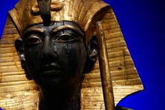 Tutankhamun, The Golden Pharaoh
