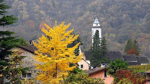 das Dorf Maggia