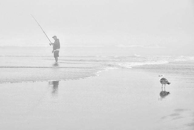 Pêcheur de brume