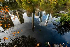 Autumn in New-York