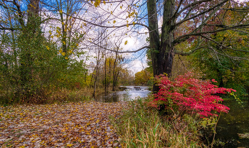 Autumn Arrives in Indiana (7)