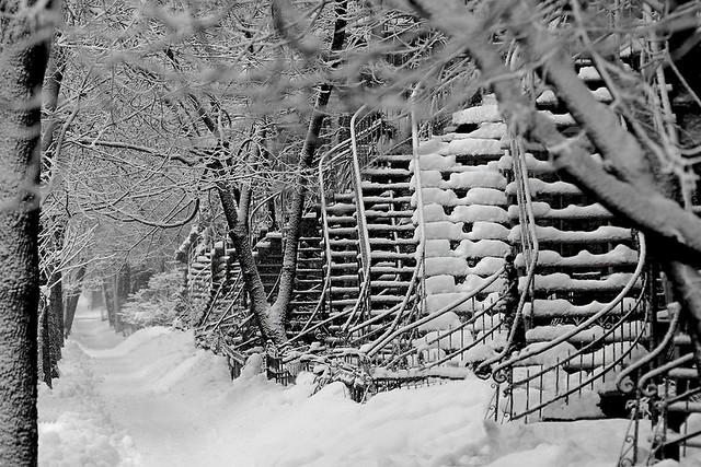 Par un matin d'hiver