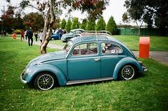 Volkswagen Beetle (photo 2)