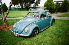 Volkswagen Beetle (photo 3)