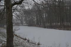 Oude Vechtarm in Ommen in de sneeuw (136FJAKA_2995)