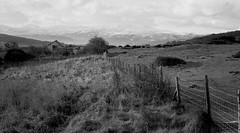 Bryn Dedwydd farm and Snowdonia 1969?