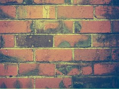 Bricks (photo 3)