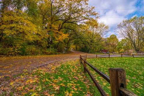 Autumn Arrives in Indiana (8)
