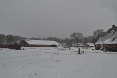 Gebouwen in Ommen in de sneeuw (136FJAKA_3001)