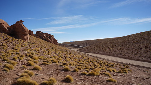 A long track in the heights of Southern Bolivia