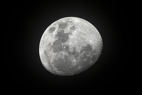 Luna - Moon  8/11/2019