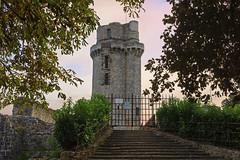 2581 La Tour de Montlhéry - Photo of Ris-Orangis