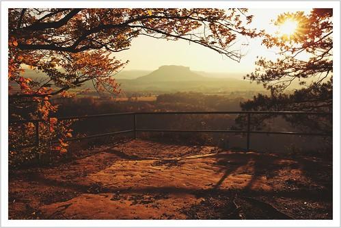 Ein Sonnenbild gegen die Herbsttristesse