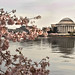 Jefferson Memorial Backside © Diane McKinley - 3rd Place Historical