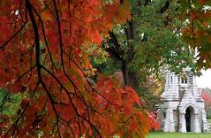 """Cincinnati - Spring Grove Cemetery & Arboretum """"Autumn Framing Bogman Mausoleum"""""""