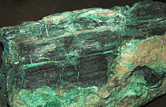 Chalcocite-permineralized fossil wood (Chinle Formation, Upper Triassic; Nacimiento Mine, southeast of Cuba, New Mexico, USA) 5