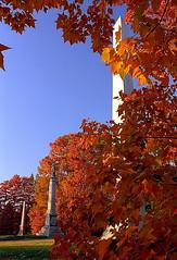 """Cincinnati - Spring Grove Cemetery & Arboretum """"Autumn Row"""""""