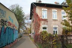 Warszawa: Odolany settlement