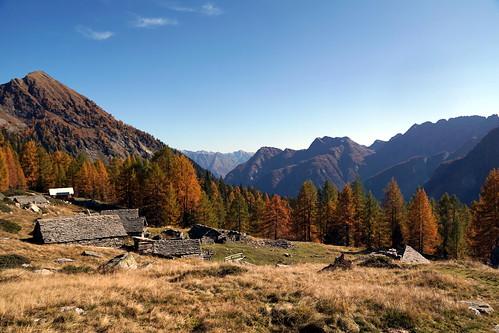 Alpe Quadrella di Fuori above Campo Vallemaggia