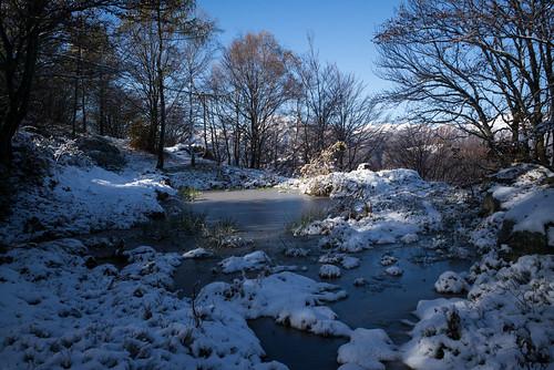 between autumn & winter