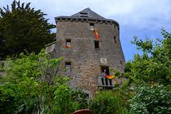 59592-Mont-Saint-Michel - Photo of Saint-Jean-le-Thomas